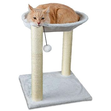 Cat Tree Furniture for Play, with Toy 🐾🐈
