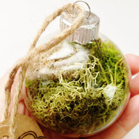 Real Moss Glass Ornament Ball Sphere Home Decor Spring Hippie Woodland Boho
