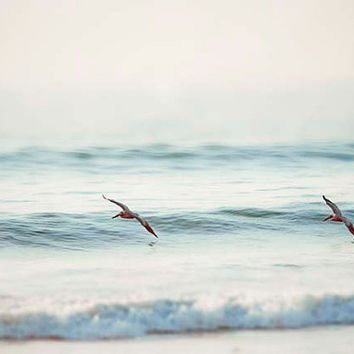 Beach Photograph- Pelicans Riding The Blue Ocean Waves, Bird Photo,  Nautical Beach Photography-Fine Art Photography Home Print