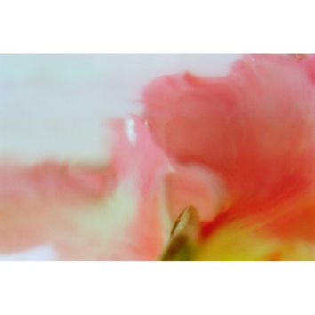 Abstract Flower Still Life, Floral Art Print, Apricot Pink Wall Decor