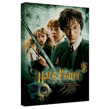 Harry Potter - Chamber Of Secrets Canvas Wall Art With Back Board