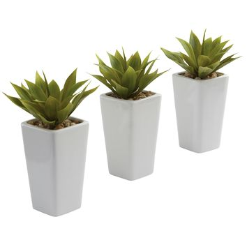 Artificial Plant -Mini Agave With Planter -Set Of 3 White Silk Plant