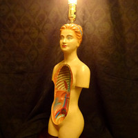 Anatomy Model Lamp - Anatomical Torso, Horror Decor, Halloween Decor, Vintage Medical Device, Upcycled Repurposed, Spooky Creepy Home