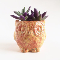 Owl Planter - Owl Home Decor - Ceramics and Pottery - Pottery Owl