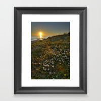 Sunset at the beach. White flowers on the sand Framed Art Print by Guido Montañés