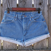 "Light blue basic high waisted shorts vintage 1990s Wrangler 100% cotton denim frayed cut offs womens juniors 30"" waist"