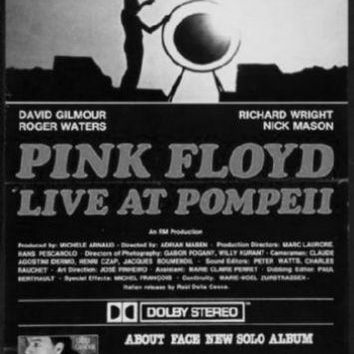 "Pink Floyd Poster Black and White Poster 16""x24"""