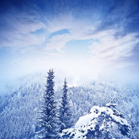 Photoraphy Background 300cm*200cm Snow Sky and Mountain Photography Backdrops Background Christmas Tree Winter Backdrops photos