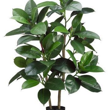 "Fake Tropical Rubber Leaf House Plant in Pot - 36"" Tall"