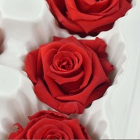3-4CM Head Beauty And The Beast Forever Rose,Rosa Eterna Natural,Dry Fresh Preserved Roses Heads For Wedding Favors And Gifts