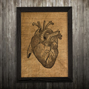 Medical poster Heart print Anatomy art Biology print BLP542
