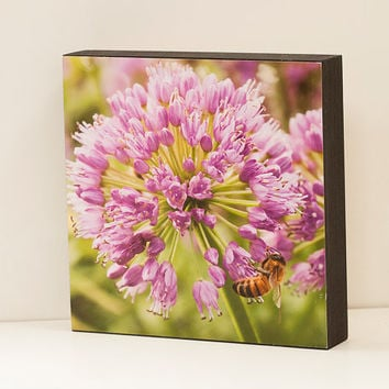 Honeybee Wall Panel - 8x8 Photo Standout, Ready to Hang Nature Photography, Purple, Green Home Decor, Summer Flower