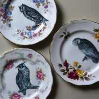 Three Owls Vintage China Tea Plates Wall Decor - 3 plates