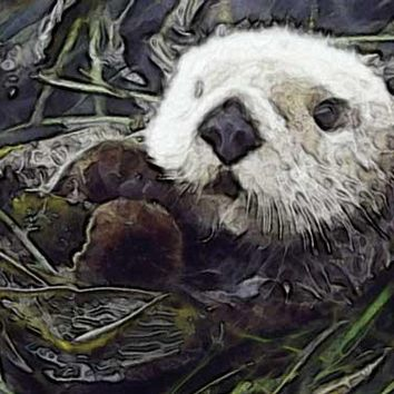 Sea Otter by Carol Gault Fine Art Print