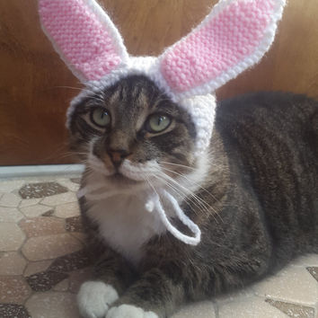 Cat Bunny Ears, knit hat for cat