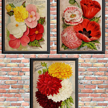 Vintage Flower Art Prints Dahlias Poppies Begonias Digital Primitive Style Printable Home Wall Decor Instant Download