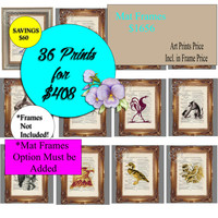 36 Art Print Special - Mix & Match Art Prints - Beautifully Upcycled Vintage Dictionary Page Book Art Print