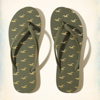 Girls Icon Rubber Flip Flop | Girls Shoes & Accessories | HollisterCo.com