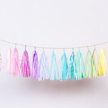 Care Bear Confetti Tassel Garland (Pastel Rainbow and Polka dots)
