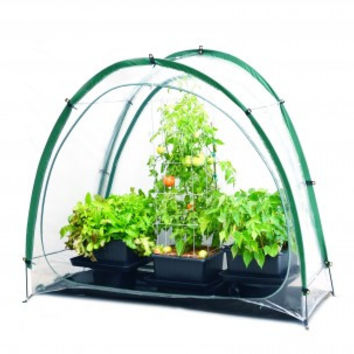 Culti-Cave Mini Greenhouse extends growing season and folds for easy storage
