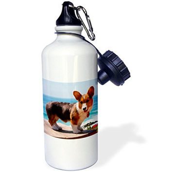 3dRose wb_206233_1 Pembroke Welsh Corgi Puppy Standing on Wooden Table Sports Water Bottle, 21 oz, White