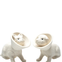 Pet Salt & Pepper Shakers | LEIF