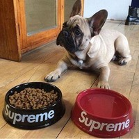 Supreme Pottery Pet's Bowl(Size:21*6.5 cm) [56907464716]