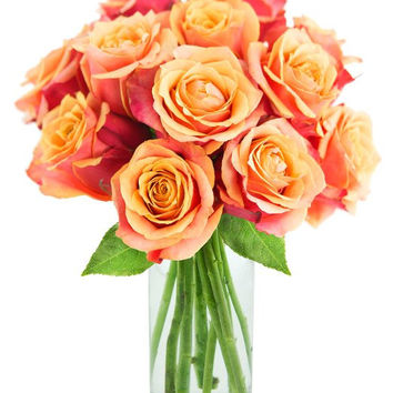 Valentine's Clementine Roses: 12 Orange Roses with Vase