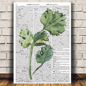 Parsley poster Kitchen print Herb print Watercolor decor RTA1490