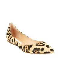 VEGASSS LEOPARD women's tailored man tailored loafer - Steve Madden