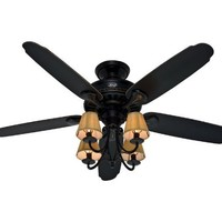 Hunter Fan Company 22720 Cortland 54-Inch Ceiling Fan with Brushed Gold Accents with Five Aged Ebony Blades and Light Kit, Basque Black