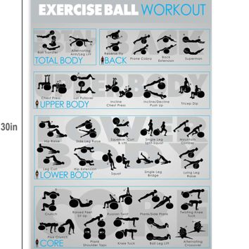 Laminated Exercise Ball Workout Poster and Stability Ball Fitness eBook Guide