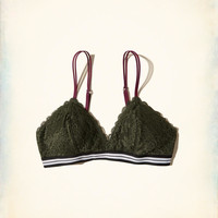 Gilly Hicks Lace Triangle Bralette With Removable Pads | Gilly Hicks Bralettes | HollisterCo.com