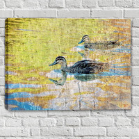 Duck Art - Wood Duck Mixed Media Art Painting on Canvas - Stretched Canvas Art