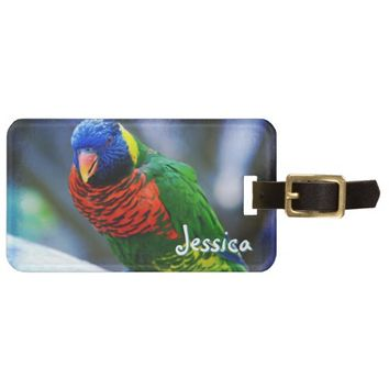 Red green blue bird photo custom name luggage tag