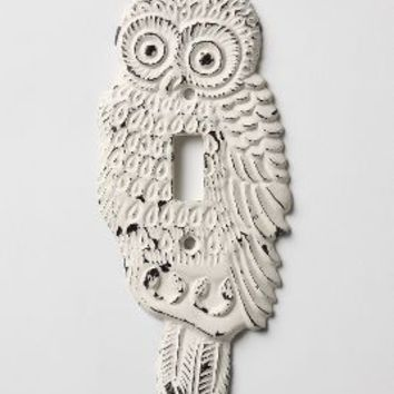 Hoot, Hoot Switchplate, Single by Anthropologie White One Size Hardware