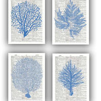 4 Ocean Blue prints, Sea fan, sea grass, coral, nautical Dictionary Prints, bathroom wall decor, beach decor cottage wall hangings