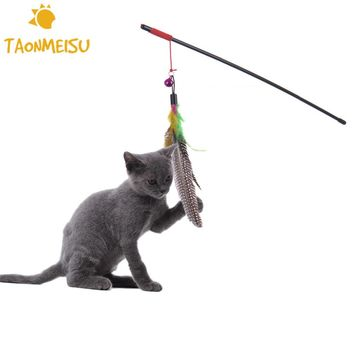 Cat Feather Play Toy