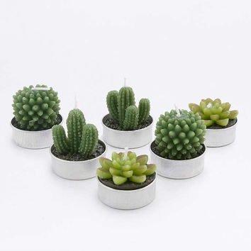Succulent Tealight Candles - Urban Outfitters