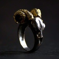 RAM RING - only 1 left in stock