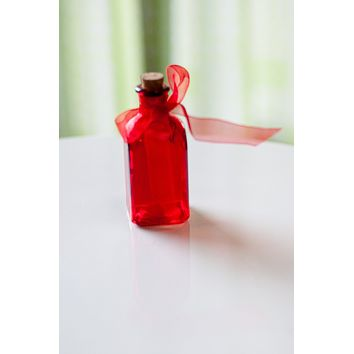 Fiesta Joy Bottle-Red