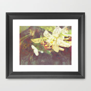 Honey Bee: Pearl Framed Art Print by Ben Geiger