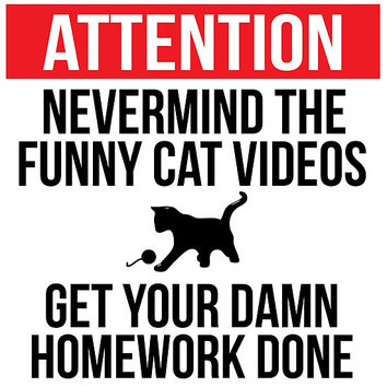 Hilarious 'Nevermind the Funny Cat Videos and Get Your Damn Homework Done' Warning Sign