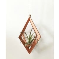 Savvie Studio - Air Plant Hanger >> Diamond >> Copper