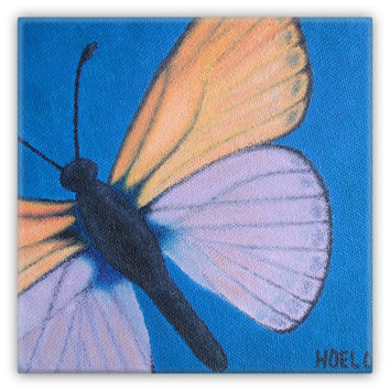 Marine Blue Butterfly - Metal Magnet of Acrylic Paint Fine Art