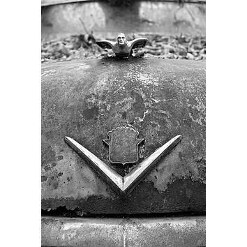 Hood Ornaments on a Rusty Abandoned Antique Car: Black and White Photograph (A0024241)