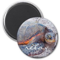 """Relax"" quote Hawaiian sea turtle close-up photo Magnet"