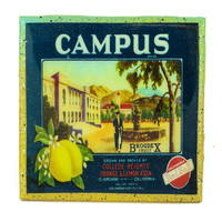 Campus Brand - Vintage Citrus Crate Label - Handmade Recycled Tile Coaster