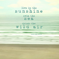 "Ocean, Beach photography ""Live in the sunshine"", tranquil, waves,seashore, aqua,mint,cream, typography,quote"