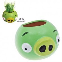 Lovely Angry Birds Series DIY Grass Growing Plant (Green)